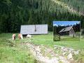 Dieser markierten Rinne folgte ich bis zur unbewirtschafteten  Mödringerhütte talwärts. Zwei Pferde und ein Fohlen begrüßten mich sofort bei meiner Ankunft. Sie hofften scheinbar auf ein Häppchen, jedoch hatte ich nichts mehr mit.