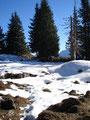 Wir folgten den Spuren im Schnee, gerade aus weiter und anschließend nach links.