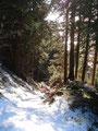 Der untere Teil unserer heutigen Tour gestaltete sich eisig und dann auch wieder leicht schneebedeckt und griffig. Teilweise musste man aufpassen um nicht direkt auf die Eisplatten zu steigen.