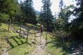 Nun folgte unsere Gruppe dem Wegverlauf in SW-Richtung durch ein Drehkreuz zurück Richtung Kientalerhütte. Mitunter wurde das Geäst der Bäume erneut dichter und …
