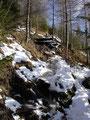 Auf diesem Teil des Steiges musste ich auch kleine Holzstufen bewältigen ...