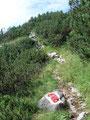 Der wunderschön angelegte Wandersteig brachte uns unserem Tagesziel immer näher.