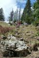 Ab hier leitete der Steig über unzählige Wurzeln in kurzen Kehren steil bergab.