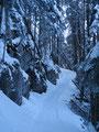 Mit unseren Schneeschuhen marschierten Ronald & ich den Karrenweg immer weiter empor.