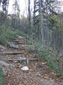 In vielen Kehren nach oben schlängelnd teilweise mit großen Holzstufen versehen ...