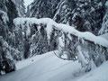 Und immer wieder winterliche Impressionen.