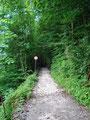 ... der uns in unzähligen Serpentinen immer höher den Berg empor brachte.