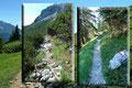 … ich in das nächstfolgende Latschengestrüpp eintauchte und dem Steig weiter ins Tal folgte.