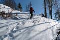 Das Gelände wurde nunmehr etwas offener, der Schnee tiefer und wir kamen immer mehr in den Genuss des kräfteraubenden Tiefschneestapfens :-).