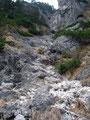 Ich passierte eine Rinne, in dem ein kleines Gerinnsel seinen Weg über die Felsen talwärts suchte. Herrlich anzusehen!