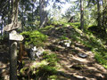 ... waren wir am Gipfelkamm angekommen. Hier ein kurzer Blick des Weges Richtung Mair Alm über diesen uns unser Abstieg führen sollte.