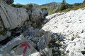 Ab der Grieskarscharte zog sich der Wegverlauf dann durch die typischen Landschaftsformen des Kalks zum Abblasbühel abwärts.