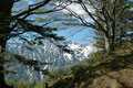 … gab einen ersten Blick auf die Nordabstürze des Sengsengebirges frei.