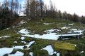 Also stiefelten wir los! In weit angelegten Serpentinen folgten wir dem Steig über den breiten Rücken des Bärenriegels kräfteverschleißend empor.