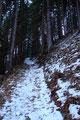 Lediglich als wir kleine Waldstücke durchquerten war der Schnee weniger. An der immer steiler ansteigenden Aufstiegsroute änderte dies allerdings nicht sehr viel, es hieß schon jetzt schwitzen ohne Ende.