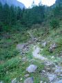 … ging in einen Steig über. Diesem breiten ausgetreten Weg stieg ich in Serpentinen die letzten Höhenmeter zur 1641m hoch gelegenen Gollinghütte empor.