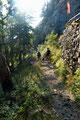 … traten den flotten Abstieg an. Entlang der Steinmauer in den Wald, dann über den Waldrücken und …
