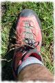 Step by step setzte ich einen Fuß vor den anderen auf die grünen Wiesenmatten des riesigen Weideboden und folgte den farbigen Markierungssteinen …