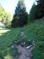 Diesmal ging's aber schnurgerade daran vorbei  und wir folgten dem Weg in den bewaldeten Sattel hinauf. Nun wendeten wir uns nach links und stiegen …