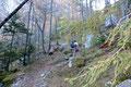 Nachdem der Wasserfallweg, der technisch anspruchsvollere Wegabschnitt problemlos hinter uns gelassen wurde, mündete der Steig in den schönen Boden der Ebersangeralm. Gemütlich folgten wir dem leicht ansteigenden Waldpfad bis …