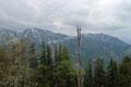 Mit der Blickrichtung nach Süden begeisterte mich die ungewöhnliche Perspektive des Sengsengebirges. Einfach phänomenal! Spering und Schillereck aus einem ganz ungewohnten Blickwinkel.
