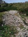 Die nächsten Schritte galten einem kleinen Geröllfeld und in nächster Folge gleich wieder einem Steig durch Latschengassen nach  links den Hang querend.