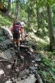 Steinig und wurzelig zog sich dieser in Serpentinen, anfangs durch den Wald und …