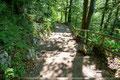 … die breiten Stufen zum Ausgangspunkt hinunter.