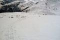 … zum Haldenstein und hinab ins Schneegrubenschartl.