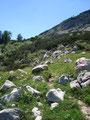 Vom Längtal steilte der steinige Pfad auf den Aiblsattel (1746m) nochmals an.