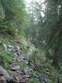 Genug geträumt, weiter ging es Richtung Lambacher Hütte.