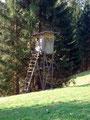"""Schau schau, auch in Bayern wird """"wild"""" (Wild) geschossen!"""