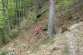 Für uns ging es aber zügig entlang des Steiges weiter. In einigen Kehren windete er sich über eine Steilstufe durch den Wald hinunter …