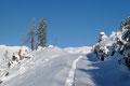 Letztendlich wandte ich mich jedoch wiederum meinem Aufstieg zu und folgte einem Schneeschuh vor den anderen setzend dem gespurten Routenverlauf, …