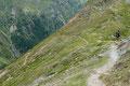 Wir wollten unsere Wanderpartnerin nicht allzu lange warten lassen, deshalb traten auch wir schleunigst den Abstieg vom 2406m hohen Hörnle an. Den weiten Kehren jetzt Kräfte sparender nach unten folgend, …