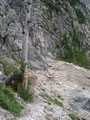 Am Einstieg angekommen sah ich keinen Weg, sondern nur eine Steilwand