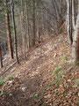 Auch diese hinter mir gelassen, folgte ich den engen Serpentinen des Ennsdorfer Steiges wieder hinunter.