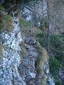 Nach einigen sehr rutschigen steilen Steigungen,  komme ich zu den eigentlichen Schlüsselstellen des Aufstieges .......