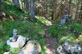 … führte derselbe Waldsteig zurück ins Tal.