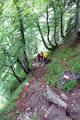 Dieser sehr nasse, dreckige und äußerst rutschige Steig Nr. 620 (Harald kann es bestätigen, den er verlor kurz den Halt und setzte sich auf seinen Allerwertesten) brachte uns rasch tiefer.