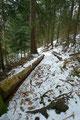 Speziell beim Bergabgehen musste man teilweise äußerst vorsichtig steigen, um nicht auf einer vereisten Stelle das Gleichgewicht zu verlieren und unerwünschten Bodenkontakt zu erfahren.