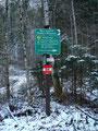 Schon nach ein paar Metern auf der Forststraße kamen wir zu einer Abzweigung bei der wir den rechten Weg einschlugen.