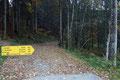 Der heutige sonnige Sonntag wurde für eine Bergtour in der Pyhrn-Priel-Region genutzt. Genau gegenüber des Parkplatzes  der Pyhrnpass-Höhe (954m) führte die markierte Schotterstraße Nr. 610 in Richtung Fuchsalm und Bosruck.