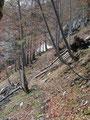 ... und schon befanden wir uns unmittelbar vor der Schlüsselstelle unserer heutigen Bergtour, der sogenannten Hahnlerstiege.