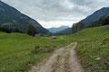 … folgte der Schotterstraße weiter über den grünen Almboden zur Unterbergeralm.