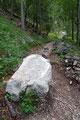 """… die einen schnell eine Steilstufe empor brachte und in den Wald eintauchen ließ.  """"Zacher Schuach"""" war genau der richtige Ausdruck für den nächsten Wegabschnitt. Schweißtreibend und steinig zog sich der Weiiiiitwanderweg …"""