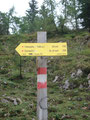 ... kamen danach gleich zur Abzweigung auf den Steig Nr. 218 Richtung Dümlerhütte.