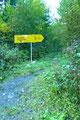 """Nach einem etwa 1,5 km langen """"Forststraßenhatscha"""" verließ ich nun die Schotterstraße und bog links in einen kleinen Steig ein."""