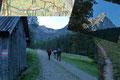 Um unsere Betriebstemperatur zu halten, folgten wir flotten Schrittes unaufhörlich der Forststraße entlang. Erst vorbei an kleineren Almhütten, dann an der Pölzalm und einer Scheune, bis in den Wald hinein.