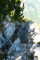 Zwischendurch gab es die eine oder andere kleinere problemlose Felspassage zu überwinden und so schlängelte sich der Steig durch die Latschengassen weiter und weiter abwärts.